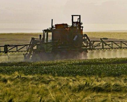 Glyphosat, Krebs und das Mikrobiom